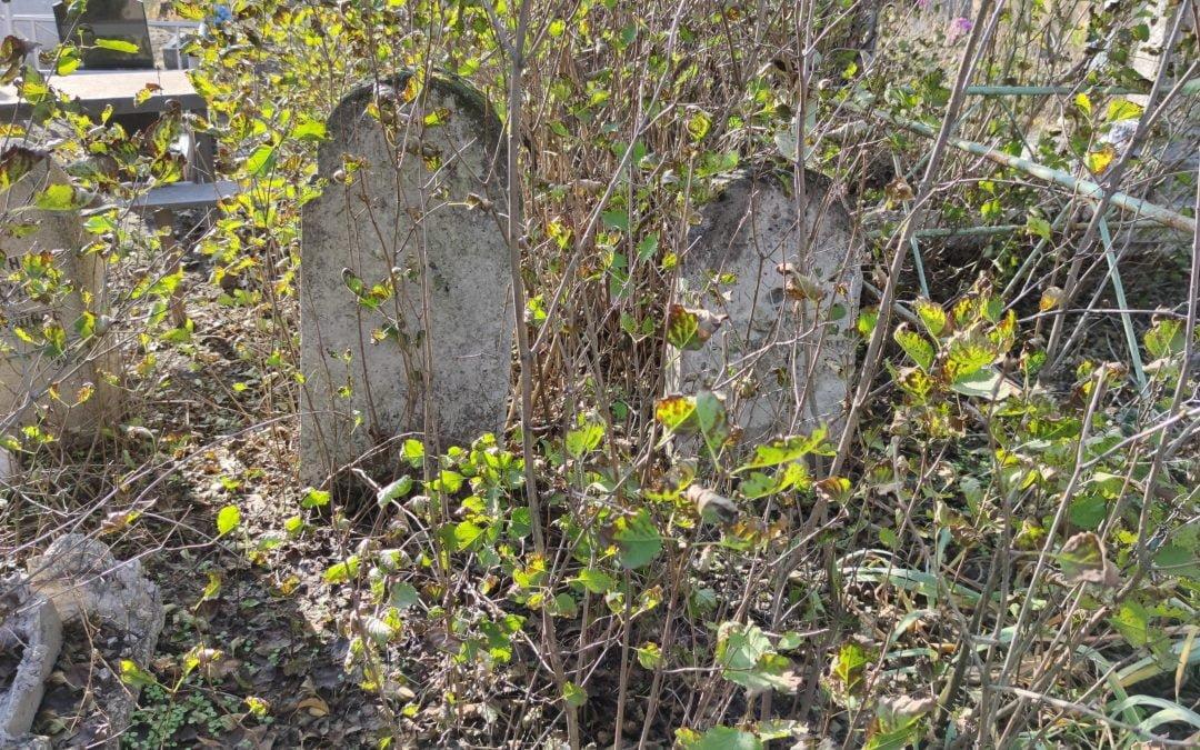 Немецкое кладбище на о. Хортица. Mennonite cemetery on the island of Khortitsa. Mennonitischer Friedhof auf der Insel Khortitsa